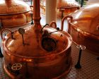 How Switch-Rated Plugs Benefit the Craft Brewing Industry